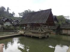 Fischteich mit Reisverarbeitungshäuschen