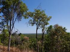 Blick über den Litchfield Nationalpark