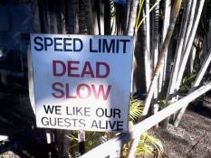 bitte keine Gäste töten