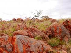 die Outbackfarben