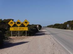 Warnung vor Fußgängern