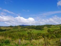 Grüne Berge der Bio-Farm