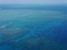 die Farben des Riffes