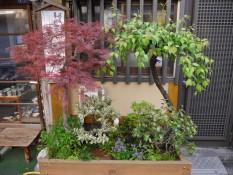 Hausgarten in Tokio