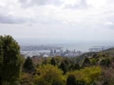 Kobe von Oben