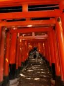 Torii Inari
