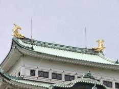 Wächter auf dem Dach