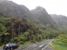 auf der fahrt von westport nach punakaiki