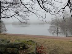 Delsjön einmal in ganz anderer Stimmung - im Nebel