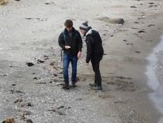 Auf der Suche nach Muscheln :)