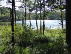 Spaziergang um den Delsjön - Walk around Delsjön