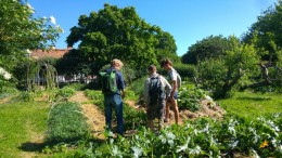 Permaculture of the Koster gardens