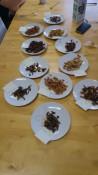 fungi-tasting!
