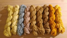 Handdyed wool with everything from kitchen and garden