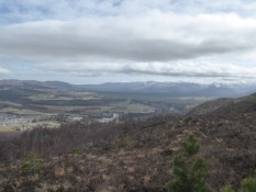 View from hike close Aviemore