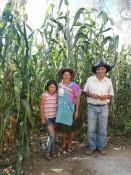 Die Familie vor ihrem Maisfeld