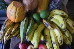 Plátanos maduros/Plátanos verdes/ Bananas