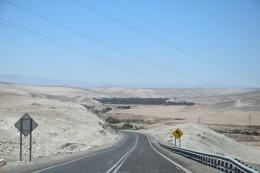 Wüste mit Oasen