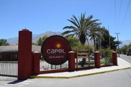 Pisquería Capel