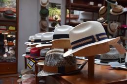 Der berühmte Panama Hut