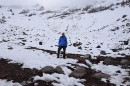 Hinter mir der Chimborazo