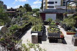 La huerta - Der restauranteigene Garten
