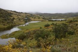Laguna de Socha