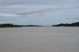 Der Amazonas