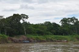 Das Flussufer - La orilla