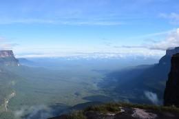 La selva de Guyana