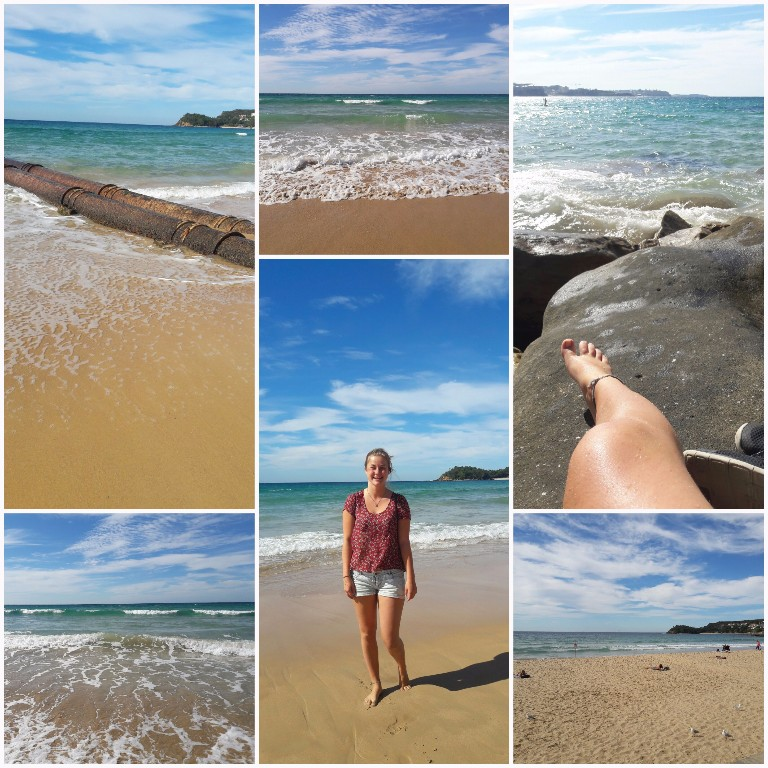 So in love with Sydneys beaches