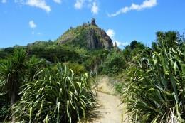 Mt. Manaia! Als wir unten standen, hätten wir niemals gedacht, dass es wirklich nach ganz oben geht!