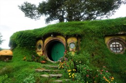 hier wohnen Frodo und Bilbo Beutlin - wer erkennt's? Der Baum auf dem Haus ist die einzige unechte Pflanze in Hobbiton!