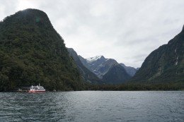 durch den 14km langen Fjord zur Tasmansee