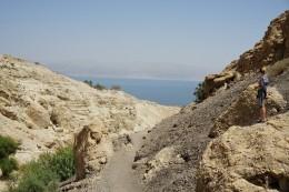 im Hintergrund das Tote Meer :)
