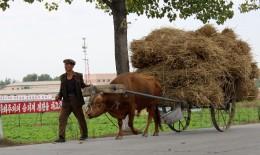 Traktorenersatz