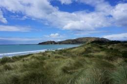 Strand und Dünenlandschaft