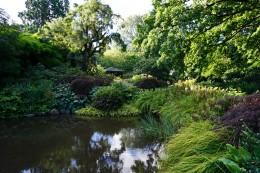 Der schöne botanische Garten von Dunedin