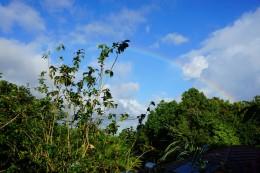 Heute Morgen hörte der Regen endlich auf.