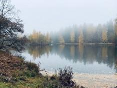 Der Schwanensee (Schwäne waren ausgeflogen)
