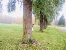 Masterversteck im Burggarten
