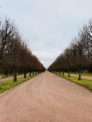 Palastpark