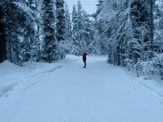 Bisschen im Schnee spielen