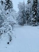Das nenn ich mal Winter