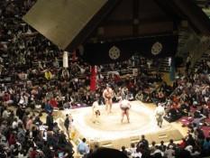 Finale - Kotoôtoshû links (Bulgarien) gegen den Gewinner (Japan)
