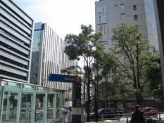 Im Gegensatz dazu, findet man in Shinjuku City breite Boulevards, nagelneue Hochhäuser und Luxusartikelgeschäfte