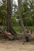 Chillen unter Palmen