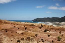 Felsen, Meer und Cape Reinga in der Ferne