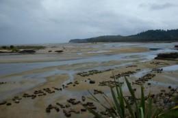 Die Tasmanische See bei Ebbe