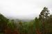 Immergrüne Tablelands